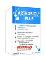 Ineldea Artrobiol Plus 120 Gélules à Bordeaux