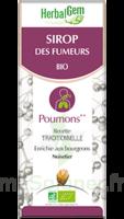 Herbalgem Sirop Bio Des Fumeurs 150ml à Bordeaux