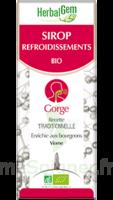 Herbalgem Sirop Bio Refroidissement 150ml à Bordeaux