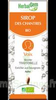 Herbalgem Sirop Bio Des Chantres 150ml à Bordeaux