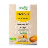 Herbalgem Propolis Large Spectre Gomme Bio B/24 à Bordeaux