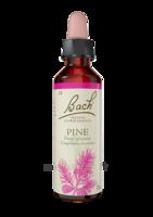 Fleurs De Bach® Original Pine - 20 Ml à Bordeaux