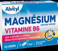 Govital Magnésium Vitamine B6 Comprimés B/45 à Bordeaux