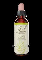 Fleurs De Bach® Original Olive - 20 Ml à Bordeaux