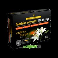 Sid Nutrition Oligoroyal Gelée Royale 1000 Mg 5g _ 20 Ampoules De 10ml à Bordeaux