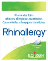 Boiron Rhinallergy Comprimés B/40 à Bordeaux